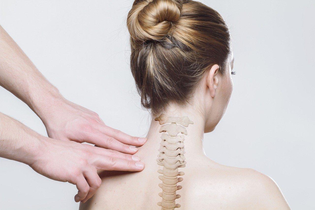 back, neck, spine