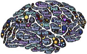 meditation, mindfulness, reconditioning